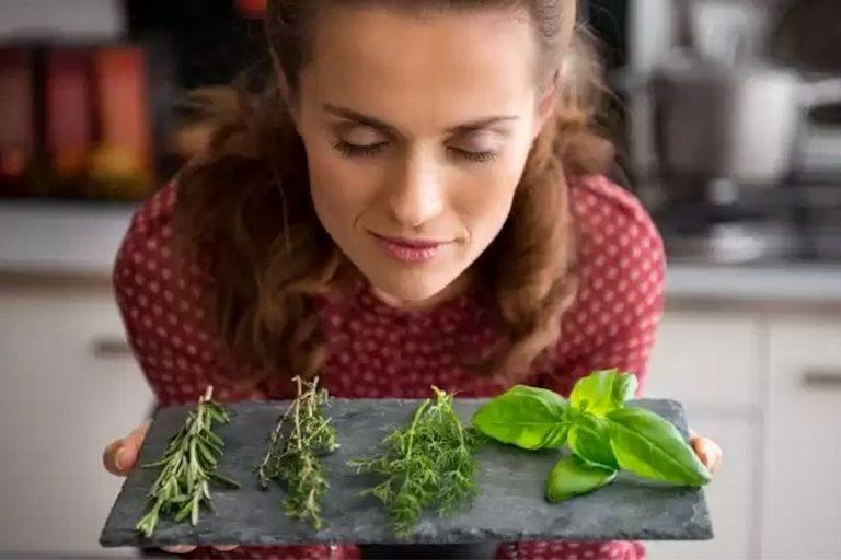 come conservare le spezie fresche